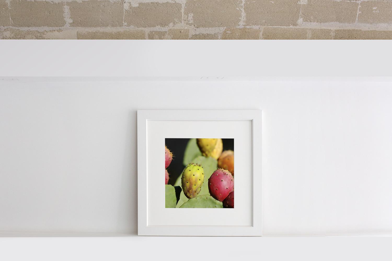 Cornice bianca con passe-partout e foto dei fichidindia